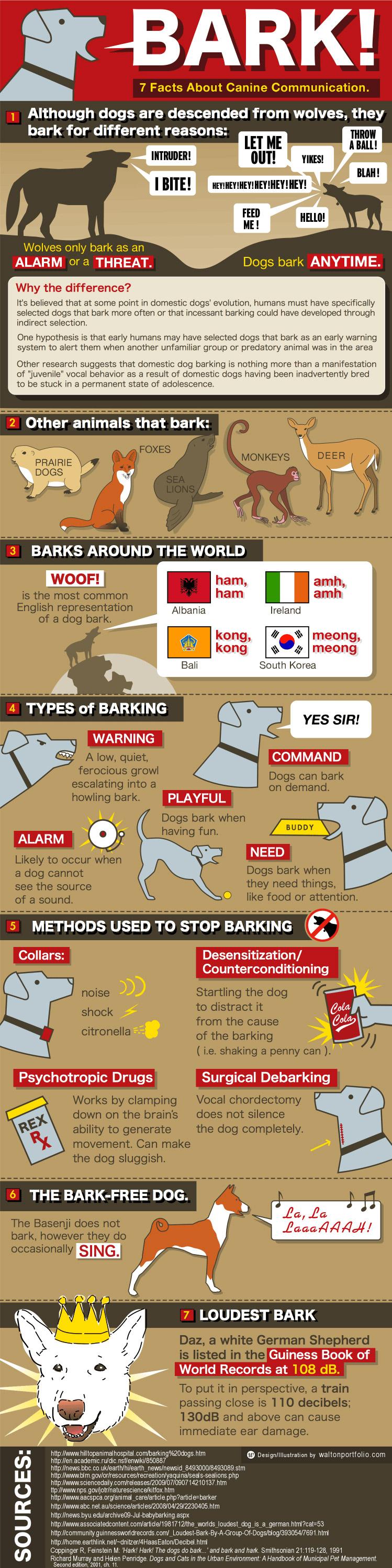 infografie latrat